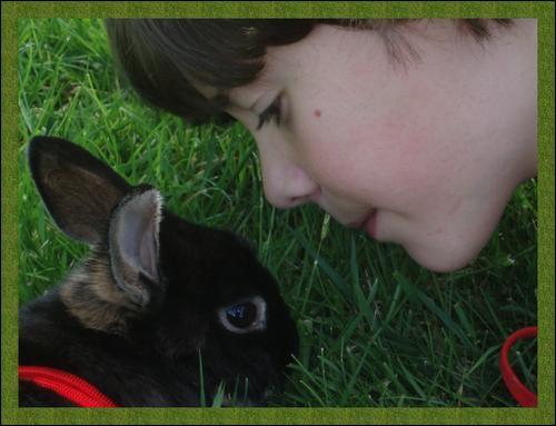 En quoi l'homme est-il supérieur au lapin ?