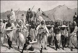Comment les armateurs négriers se procuraient-ils généralement les esclaves sur les côtes africaines ?
