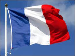 Le drapeau tricolore ayant une connotation trop révolutionnaire pour les royalistes, quel nouveau drapeau représente la France ?