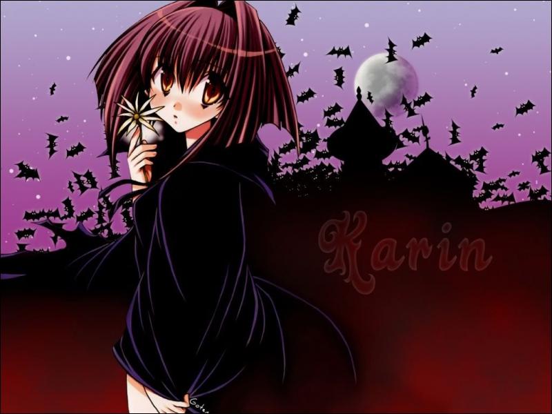 Sur qui le sang de Karin agit-il ?