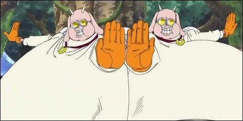 Sur Skypia, Kotori et Hotori sont les frères d'une ordalie, appartenant au clan d'Ener. Laquelle est-ce ?