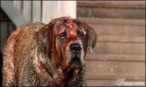 Enorme Saint-Bernard de 120 kg mais aussi le meilleur ami de Brett, le petit garçon de 10 ans de la famille Camber. Jusqu'au jour où le chien tombe dans une caverne infestée de chauves-souris :