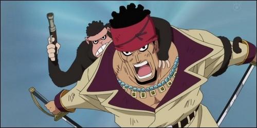 De quoi est capable le singe qui accompagne toujours Doma, capitaine venu pour libérer Ace à Marine Ford ?