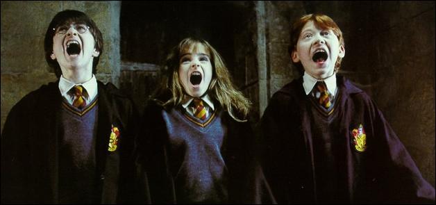 De quel tome vient cette photo de Harry Potter, Hermione Granger et Ron Weasley ? (À l'aide ! )