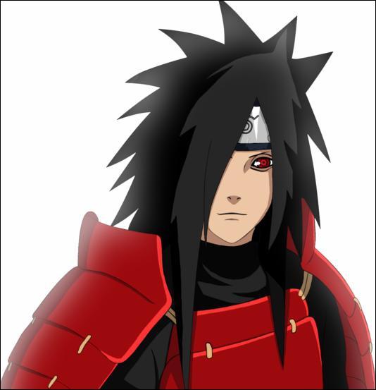 Qui est ce ninja ?
