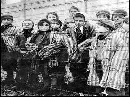 Sous quel nom est connue la 'solution finale' d'extermination des Juifs mise en oeuvre par Himmler ?