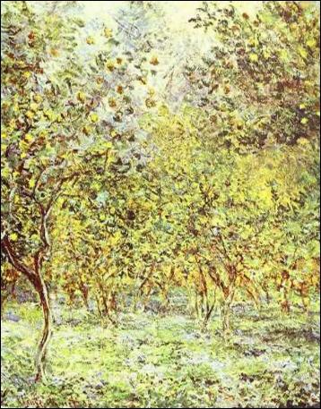 Qui a représenté des 'Citronniers à Bordighera' ?