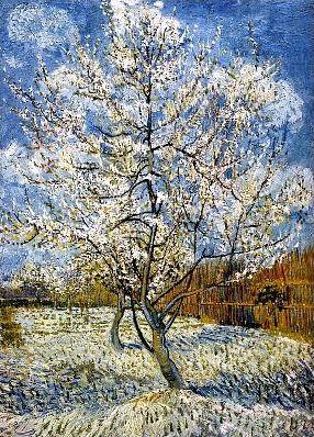Les arbres fruitiers en peinture