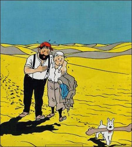 Un moment , Tintin et Haddock de retrouvent perdus dans le désert et se donnent la main; c'est une image de l'album :