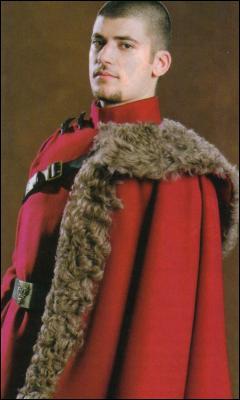 Le joueur irlandais Viktor Krum est un célèbre attrapeur.