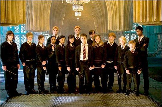 Dans le cinquième tome, Harry a une vision qui montre Sirius torturé par Voldemort. Harry, Neville, Ron, Hermione, Luna et Cho décident de sauver Sirius.