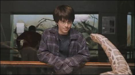 À l'occasion de l'anniversaire de Dudley, la famille Dursley se rend au zoo (premier tome). Harry Potter et Peter Polkiss accompagnent les Dursley.