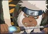Enkououe Enma est un singe invoqué par :