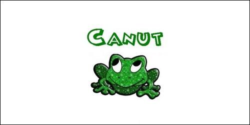 De quelle origine est le prénom Canut que l'on fête le 10 juillet ?
