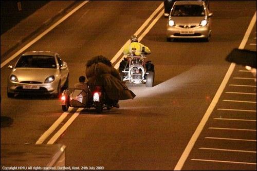 Avec qui Harry se rend-il au Terrier au début du flim (indice : dans la moto volante) ?