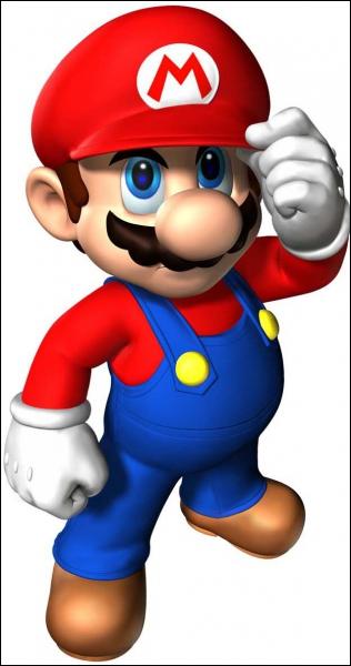 Pour commencer ce quizz, Mario est ...