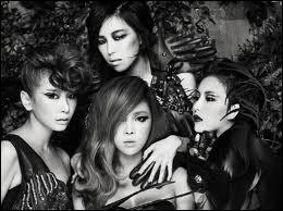 Comment s'appelle le fanclub des Brown Eyed Girls ?