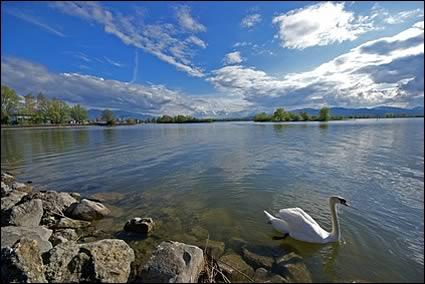 Le lac de Constance est la plus grande étendue d'eau d'Allemagne. Il s'étale à la fontière avec deux autres pays. Lesquels ?
