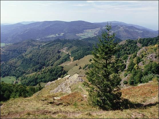 Quel est le nom du massif montagneux du Sud-Ouest de l'Allemagne, séparé de celui des Vosges par la vallée du Rhin ?