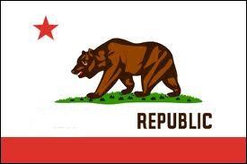 De quel Etat américain provient ce drapeau ?