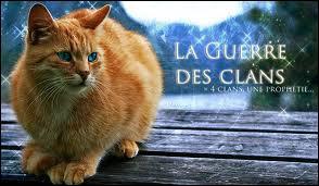 Comment se nommait Nuage de Feu , quand il était chat domestique ?