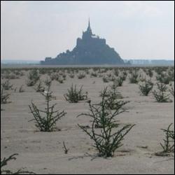 Parmi ces villes, laquelle ne fait pas partie de la baie du Mont-Saint-Michel ?