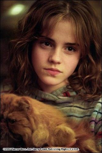 Quel animagus non déclaré Hermione a-t-elle découvert ?