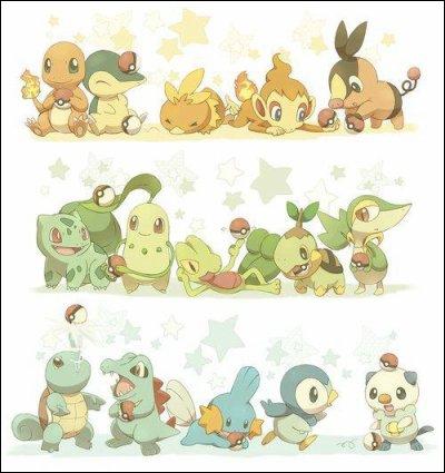 Que sont ces Pokémons ?