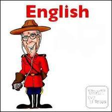 Langues étrangères : laquelle de ces expressions idiomatiques anglaises (Idioms) veut dire qu'il pleut beaucoup ?