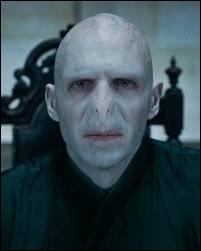 Qui joue Voldemort ?