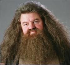 Comment se nomme l'acteur jouant Hagrid ? (professeur de soins aux créatures magiques )