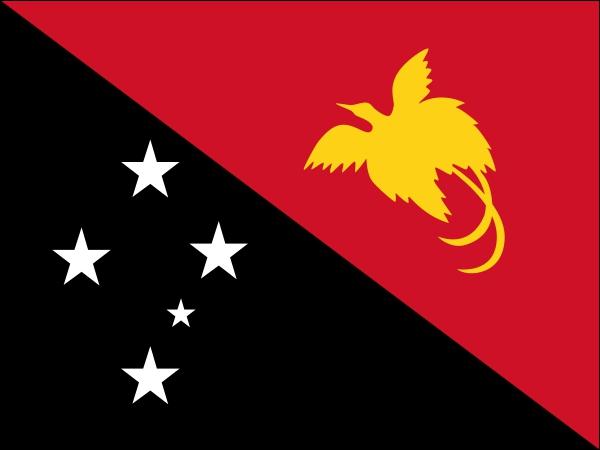 Et quel est le drapeau de ce pays. Est-ce celui-ci ?