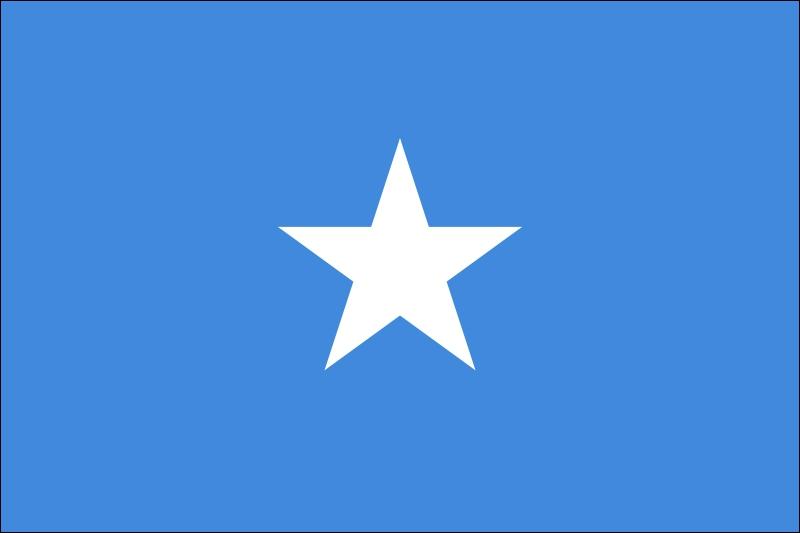 Quel pays a adopté ce drapeau ?
