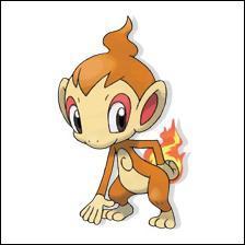 Quel est ce pokemon feu ?