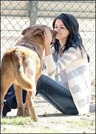 Quel est l'animal préféré de Selena Gomez ?