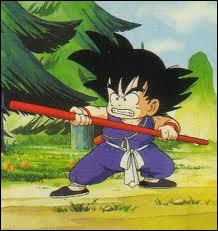 Quand voit-on Sangoku ainsi dans le dessin animé ?