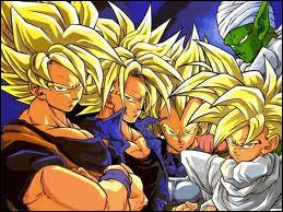 Lequel de ces personnages ne peut être un Super Saïyens ?