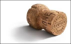 En 1670, Dom Pérignon fit progresser le vin de Champagne et utilise un bouchon de liège. Quelle était son activité principale ?