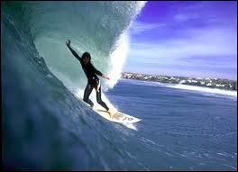 Quelles sont les 3 sortes majeures de vagues ?