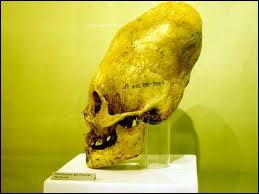 Au sein de cette civilisation disparue, provenant d'Amérique du Sud, on déformait les crânes des enfants de noble caste, à l'aide de deux planchettes fixées sur le front. Quel était ce peuple ?