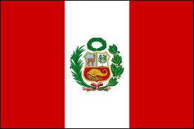 A quel pays d'Amérique du Sud ce drapeau appartient-il ?