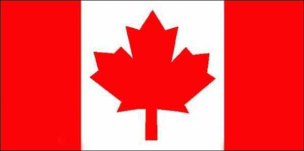 A quel pays correspond ce drapeau et quelle feuille est représentée ?