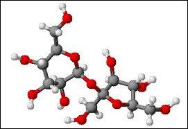 Question d'orthographe. Le sucre est majoritairement formé d'un composé appelé... ( dont voici la structure chimique)