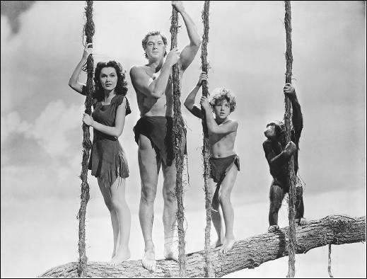 Avec quel Tarzan, le chimpanzé Jitts, décédée le 24 décembre, aurait joué le rôle de Cheetah à partir des années 30 ?