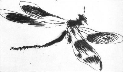 Qui a dessiné au fusain cette délicate 'Libellule' ?