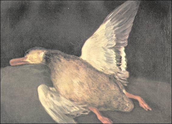 Qui a peint ce canard ?