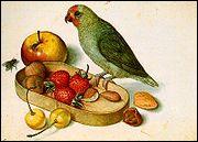 De qui est cette 'Nature morte au perroquet' ?