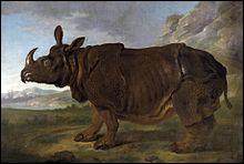 Et cet autre rhinocéros