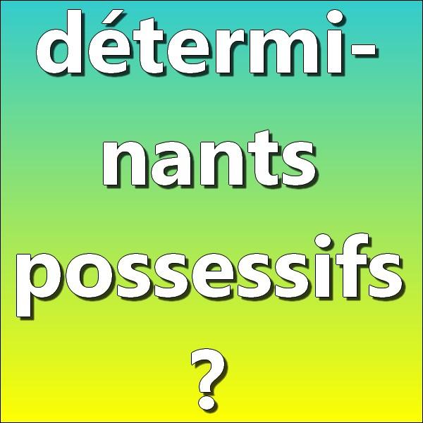 Parmi les déterminants suivants, lesquels sont des déterminants possessifs ?