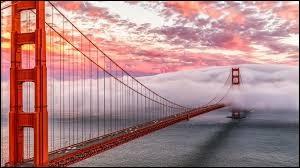 Quel chanteur n'a PAS dans son répertoire une chanson ayant dans le titre : ''San Francisco'' ?